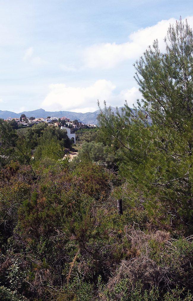 Paisaje vivienda mediterránea en Orba - Alicante, en la montaña, realizada por Chiralt Arquitectos Valencia.